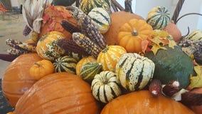 Affichage de thanksgiving Images stock