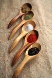 Affichage des épices sèches sur des cuillères. Image stock
