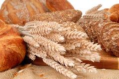 Affichage divers de pain Photo libre de droits