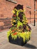 Affichage floral image libre de droits