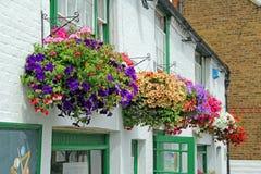 Affichage floral accrochant de paniers Images stock