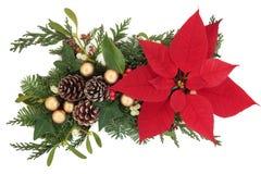Affichage floral de Noël Photo stock