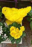 Affichage floral jaune Photos stock