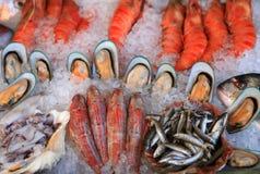 Affichage méditerranéen de fruits de mer Images stock