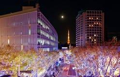 Affichage romantique d'illumination d'hiver dans la saison de Noël dans Keyakizaka photographie stock libre de droits