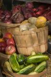 Affichage végétal Photographie stock libre de droits