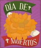 Affiche avec la fleur de Cempasuchil offrant pour le Mexicain et le x22 ; Dia de Muertos et x22 ; , Illustration de vecteur Image libre de droits