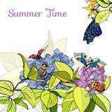 Affiche avec les feuilles, les fleurs et les insectes verts Photos libres de droits