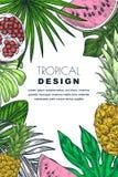 Affiche, banner of het kader van de groetkaart met tropische palmbladen, ananas, watermeloen Stethoscoop over wit wordt geïsoleer royalty-vrije illustratie