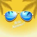 Affiche d'été de vecteur avec la paume de lunettes de soleil Photographie stock