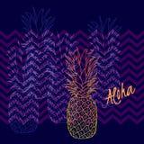 Affiche d'ananas, illustration de vecteur Fruit tropical exotique tiré par la main dans le contour Aloha signifie bonjour en Hawa Photographie stock libre de droits