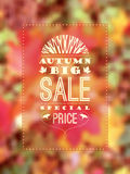 Affiche d'Autumn Sale Photographie stock