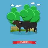 Affiche de concept de vecteur de ferme de boeuf Pâturage des bétail sur un pâturage illustration de vecteur
