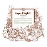 Affiche de croquis de vecteur des légumes de ferme illustration stock