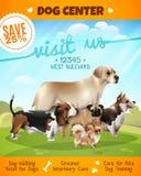 Affiche de marche de chiens Image stock