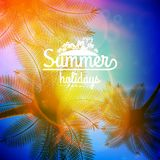 Affiche de typographie de coucher du soleil de palmier Image libre de droits
