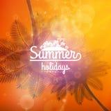 Affiche de typographie de coucher du soleil de palmier Photos libres de droits