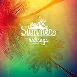 Affiche de typographie de coucher du soleil de palmier Photo stock