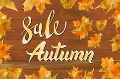 Affiche de typographie de vecteur de vintage de vente spéciale d'automne sur le fond en bois posé Images stock