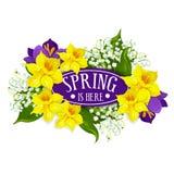 Affiche de vecteur de vacances de ressort de bouquet de jonquilles Image libre de droits