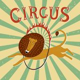 Affiche de vintage de représentation de cirque Photo libre de droits