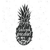 Affiche inspirée Ananas de produit naturel Images libres de droits