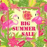 Affiche met het grote de zomerverkoop van letters voorzien, aanbiedingsetiket, palmbladen, tropische bloemen en roze flamingo De  royalty-vrije illustratie