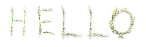 Affiche peinte à la main avec les fleurs et le lettrage Word bonjour Photographie stock libre de droits