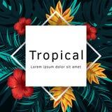 Affiche tropicale de vecteur avec les feuilles et les fleurs tropicales Photo libre de droits