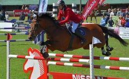 Affichez le cheval et le curseur branchants Photo stock