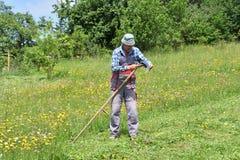 Affilage de la manière traditinoal de faux du fauchage d'herbe Photo stock