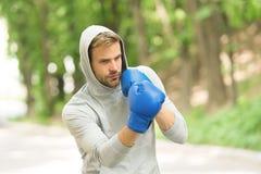Affilez sa compétence Gants de boxe s'exerçants concentrés par sportif Pratique en matière concentrée par athlète de gants de spo photographie stock