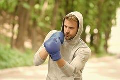 Affili la sua abilit? Guantoni da pugile di formazione concentrati sportivo Pratica dei guanti di sport del fronte concentrata at fotografie stock