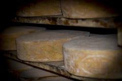 Affinage du fromage du ² solides solubles de Bagà dans une cave traditionnelle en Italie images libres de droits