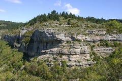 Affioramento roccioso alpino del calcare Immagine Stock