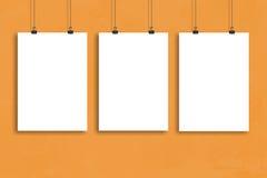 Affischåtlöje för tre vitbok upp, väggåtlöje upp Royaltyfri Bild