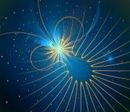 affisch för fractal för bakgrundskortdesign god Nordliga ljus med kurvljus Royaltyfri Bild