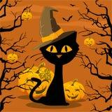 affisch halloween Katt och pumpa Arkivfoto