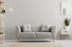 Affisch ovanför vitkabinettet med växten bredvid den gråa soffan i simpl fotografering för bildbyråer