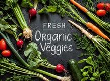 Affischdesign 'för nya organiska Veggies' Barnvårgrönsaker på svart royaltyfri fotografi