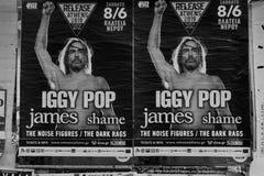 Affischer för Iggy popkonsert vaggar musik fotografering för bildbyråer