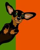Affischorientering med taxfrankfurterkorvhunden Fotografering för Bildbyråer