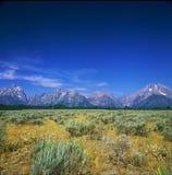 Affluenza di Mountain View - grande parco nazionale di Teton Immagini Stock Libere da Diritti