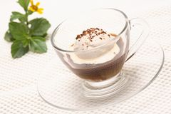 Affogato caldo coffy fotografie stock