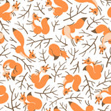 Affretti degli scoiattoli sui rami Modello senza cuciture di autunno per lo spostamento di regalo, la carta da parati, la stanza  Fotografia Stock