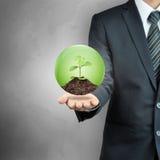 Affärsman som bär det gröna unga trädet med jord inom sfären Arkivbild