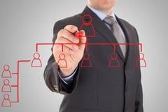 Affärsman som drar det organisatoriska diagrammet Arkivfoto