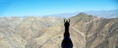 Afganistan军事 免版税库存照片