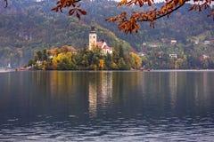 Afgetapt Eiland in de herfst in beroemd die Meer in Slovenië wordt afgetapt royalty-vrije stock foto