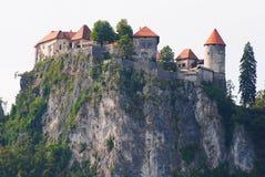 Afgetapt kasteel in Slovenië Royalty-vrije Stock Foto